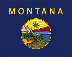 Activists turn in signatures for Montana legalization bill