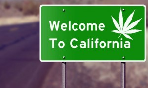 California: Nevada County District Attorney to Dismiss Decades' Worth of Marijuana Convictions