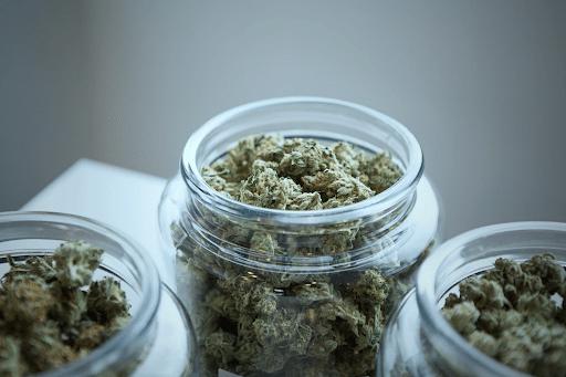 Michigan Marijuana Tax Revenue - Top States in the U.S.