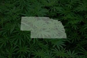Nebraska: Activists Submit Signatures for Medical Marijuana Ballot Initiative