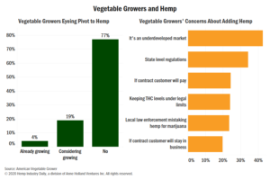 Chart: Majority of US vegetable growers steering clear of hemp production for now