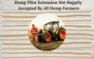 Hemp Pilot Extension Not Happily Accepted By All Hemp Farmers