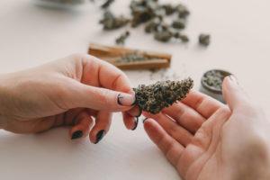 Recreational Marijuana Sales Begin In Maine