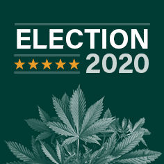 2020 election updates, analysis & highlights