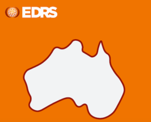 Report: Australian Drug Trends 2020 – Findings From The National Ecstasy & Related Drugs Reporting System