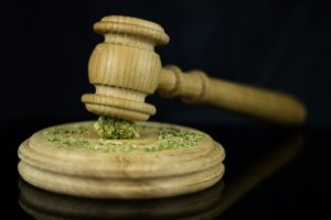 Successful Cannabis Initiatives In Three States Face Legal Challenges