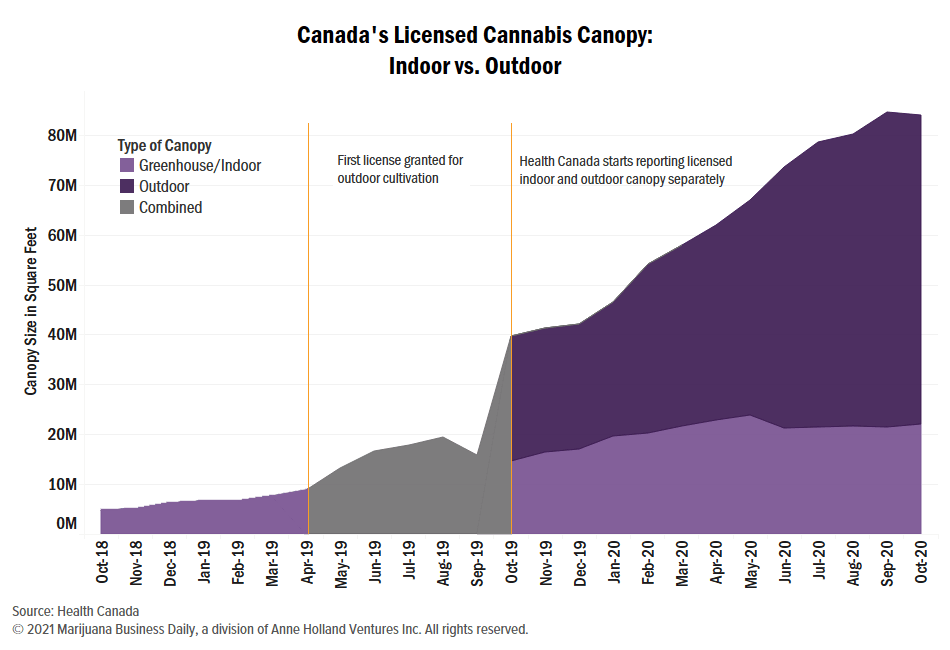 , Analyst warns of closures, consolidation amid Canadian cannabis glut