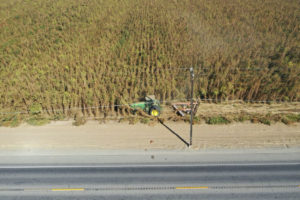 California lawsuit over hemp destruction on hold