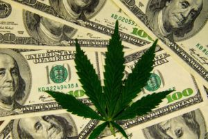 Marijuana software firm Agrify prices IPO to raise $54 million