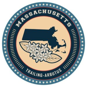 Massachusetts marijuana regulator taps attorney to fill vacant seat