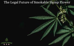 The Legal Future of Smokable Hemp Flower