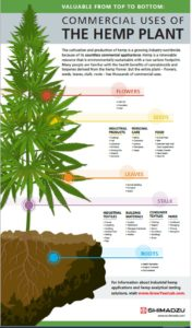 Beyond the Flower: Use of the Hemp Stalk for Products and Applications