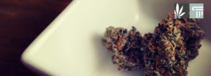 Bipartisan Medical Marijuana Bill Introduced in Idaho