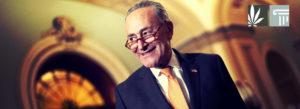 Democratic Senators Announce Plans to Federally Legalize Cannabis in 2021