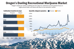 Oregon marijuana firms enjoy booming market fueled by pandemic, consumers shunning illicit suppliers