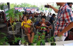 Thai Govt Says Private Companies & Individuals Can Partner With Provincial Hospitals To Produce Medical Cannabis