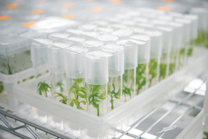 Canadian biotech firm forms JV with Australis Capital to expand capabilities in U.S.