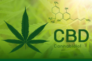 CBD: A Breakthrough in Supporting Mental Health?