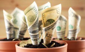 Colorado cannabis sales top $10 billion since program launch