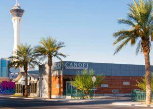 CWNevada retail store Canopi