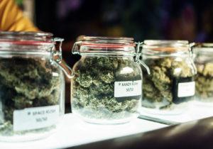 Delaware Advances Cannabis Legalization Bill for Full House Vote