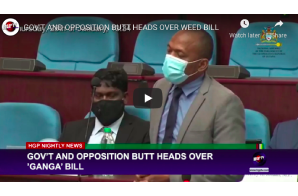 Guyana: GOV'T AND OPPOSITION BUTT HEADS OVER WEED BILL
