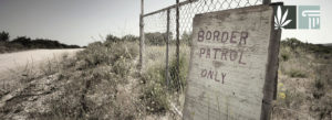 Marijuana Seizures at Southern Border Have Declined Massively Since Enactment of State Legalization Laws