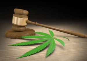 Pair convicted in bank fraud case related to cannabis transactions
