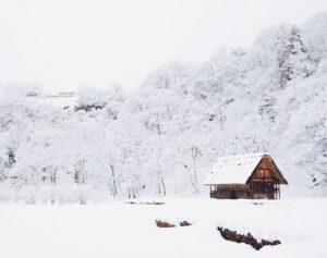 snow and hemp