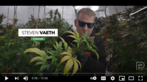 20 April 2021: Growing Award-Winning Cannabis in a Residential Garage