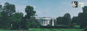 5 White House Staffers Lose Jobs Over Marijuana Use