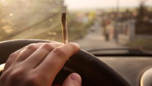 Better Measures Are Needed to Detect Cannabis Impairment While Driving, Experts Say