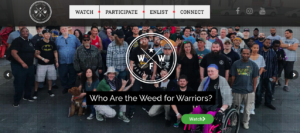 "CA: Weed For Warriors Want New Ballot To ""Fix Cannabis"""