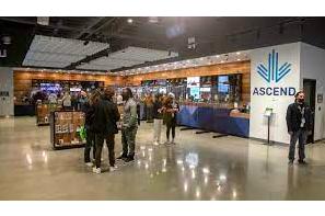 Cannabsi Supermarket To Open In Boston