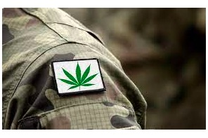 Federal Lawmakers File Bills to Legalize Medical Cannabis for Veterans