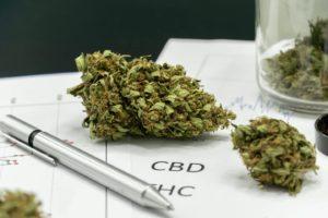 Lawmakers Reintroduce Marijuana Data Collection Act To Congress