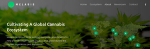 Maltese Company, Run By Brit, Melabis Intends To Plant 3000 Hectares Of Low THC In Uzbekistan