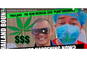Thailand: New Medical Cannabis Farm Visit