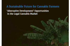 Transnational Institute New Report: A Sustainable Future for Cannabis Farmers – 'Alternative Development' Opportunities in the Legal Cannabis Market