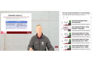 Video Series: Texas A&M AgriLife Extension Agricultural Economics – Economic & Legal Considerations for Hemp Production in Texas