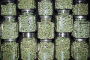 DEA Report Shows Marijuana Arrests And Seizures Up In 2020