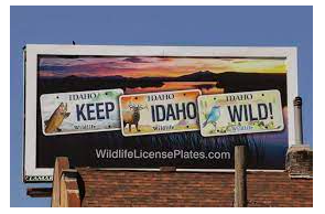 Idaho Advances Bill to Ban Cannabis Advertising