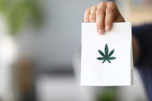 New Poll Shows Cannabis Delivery Has Had Increasing Popularity And Demand