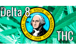 Washington becomes latest state to clarify ban on hemp-derived 'delta-8' cannabis products