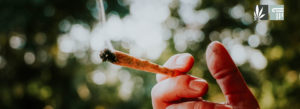 Idaho Activists Launch Cannabis Legalization Campaign for 2022 Ballot