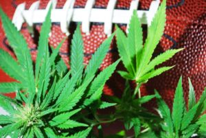 NFL Will Award $1 Million to Researchers Studying Medical Cannabis As Opioid Alternative