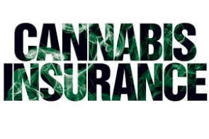 Takeaways from Talk About Regulators and Cannabis Insurance
