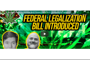 Cannabis Legalization News: Cannabis Administration and Opportunity Act   Schumer's Cannabis Bill in Senate
