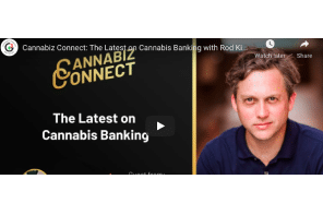 Cannabiz Connect: The Latest on Cannabis Banking with Rod Kight