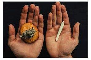 Smoking Cannabis Vs. Eating It: Important Differences To Be Aware Of